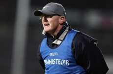 Poll: Do you think Clare hurling needs an independent review?
