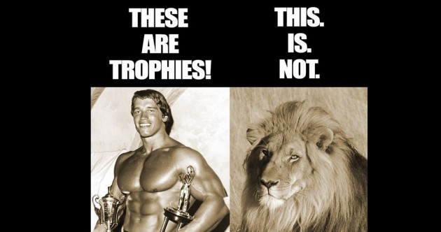 Arnold Schwarzenegger has something to say to the man who shot Cecil