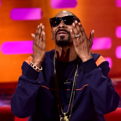 Snoop Dogg tries to board plane with �380k, it doesn't go to plan
