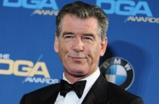 Pierce Brosnan stopped at airport after trying to bring knife on a plane