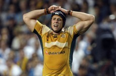 Former Australian international to replace Paul O'Connell at Munster