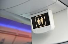 Swedish pilot uses axe to open toilet for drunk passenger