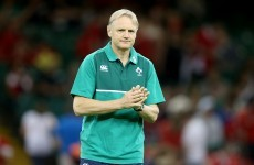 'They're not great conversations to have' – Schmidt prepares to cut 7 Irish players