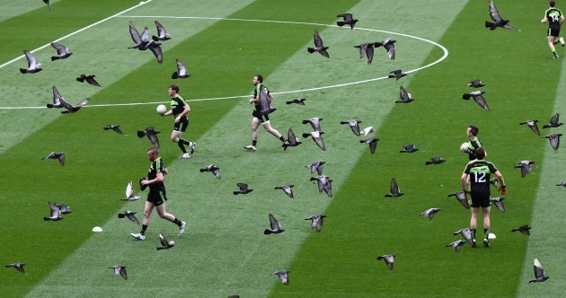 Croke Park to deploy a very different hawk eye in upcoming games