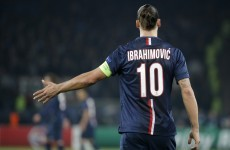 Zlatan could've been an MMA star if the whole football thing hadn't worked out