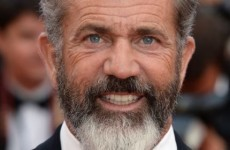 Police investigating after Mel Gibson 'shoved' and 'spat on' photographer