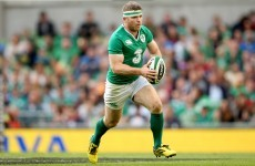 Gordon D'Arcy and Michael Bent sent out to impress on Leinster duty