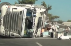 18 hospitalised after a truck carrying thousands of bees crashes on motorway