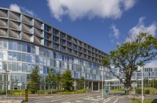Celtic Tiger Elmpark campus on sale for €185 million
