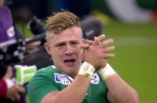 Ian Madigan's tears after beating France will make you proud to be Irish