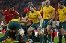 Pocock escapes a citing following incident in win against Wales
