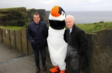 Caption comp: Trap and Tardelli visit the Cliffs of Moher… and meet a giant puffin