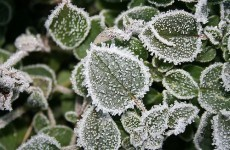 Freezing fog and ice to make driving conditions dangerous