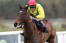 Sizing Europe warms up for Cheltenham with Punchestown win
