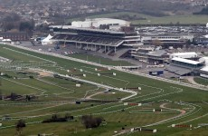 Everything you need to know about horse racing (but were afraid to ask)