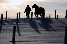 The big freeze: Thursday's Fairyhouse card cancelled