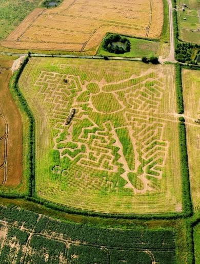 PHOTOS: Farmer creates maze in the shape of Usain Bolt