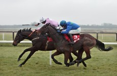 Fly leads big race treble on mixed day for Mullins