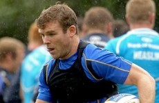 Up and running: Kearney, D'Arcy back in contention for Leinster