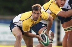 Ireland wary of the long-distance threat posed by South Africa's Pienaar