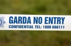 Investigation launched into death of former garda in Cavan