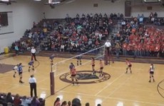 VIDEO: Watch this crazy volleyball spike take out a player and drop a fan too
