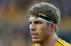 Wallabies lose Pocock to injury for England Test