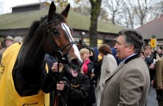Career change: Kauto Star leaves Nicholls early to begin dressage training