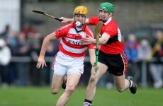 Fitzgibbon Cup reaches last eight