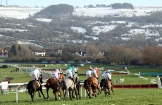 Tuesday at Cheltenham: 5 things to say when the office chat turns to racing today