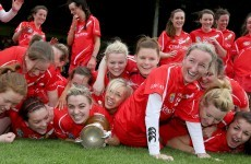 Cork and Limerick claim honours in camogie league finals
