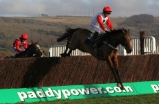 Cashing in: Paddy Power revenue jumps