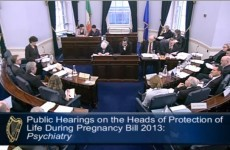 8 interesting moments from Day 2 of the Oireachtas abortion hearings