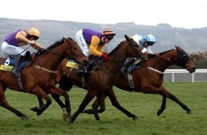 The Magnificent Seven: Cheltenham champions