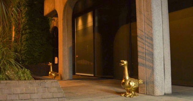 Two golden geese appear outside old Anglo Irish Bank HQ