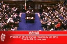 This is the moment the Dáil passed X Case legislation