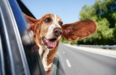 The Burning Question*: Air con or window down in the car?