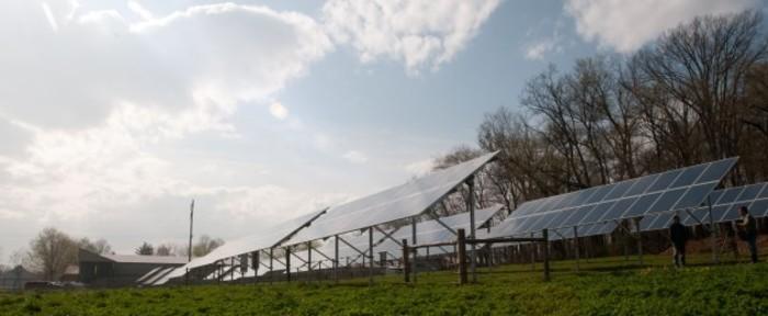 solar farm cropped