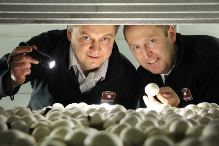 Vitali Shastak, Production Manager Walsh Mushrooms Golden Ltd & Padraic O'Leary, MD, Walsh Mushrooms.jpg