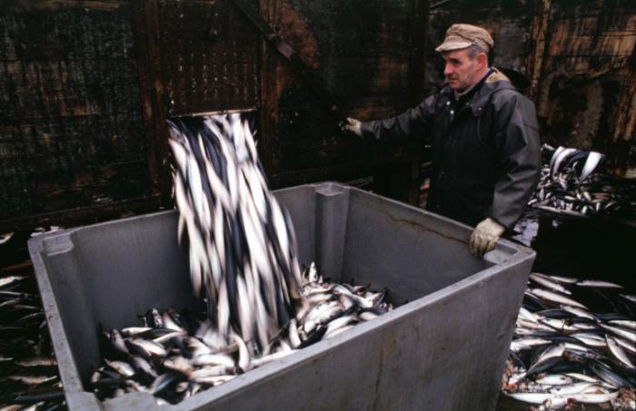 UK FISHING DECISION 12319_90516576