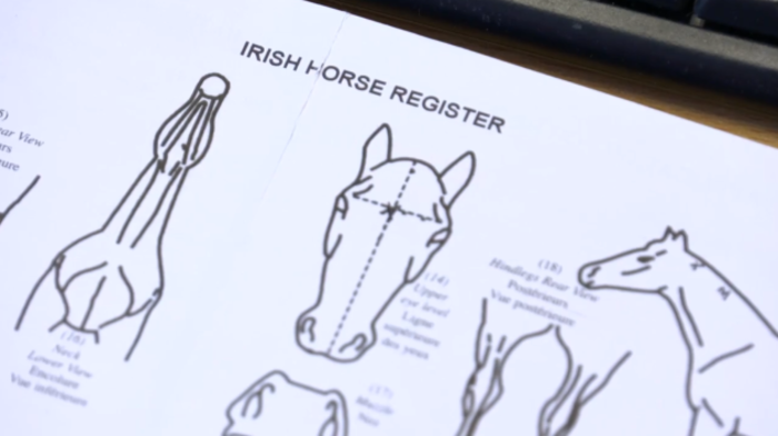 Horse Sport Ireland 3