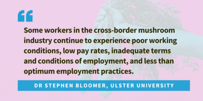 Quote from Dr Stephen Bloomer of Ulster University... Some workers in the cross border mushroom industry continue to experience poor working conditions, low pay rates, inadequate terms and conditions of employment, and less than optimum employment practices.