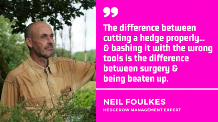 Quote by Neil Foulkes, hedgerow management expert. The difference between cutting a hedge properly and bashing it with the wrong tools is the difference between surgery and being beaten up.