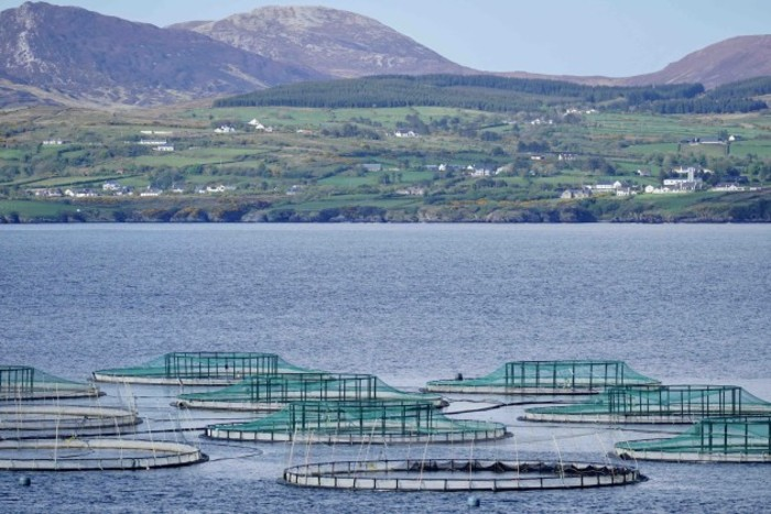 Salmon Farm on Lough Swilly, Co Donegal