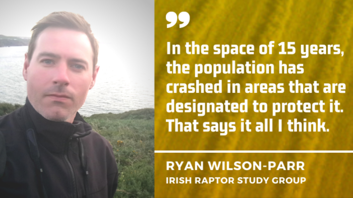 In the space of 15 years, the population of Hen Harrier has crashed in areas that are designated to protect it - Ryan Wilson Parr, IRSG