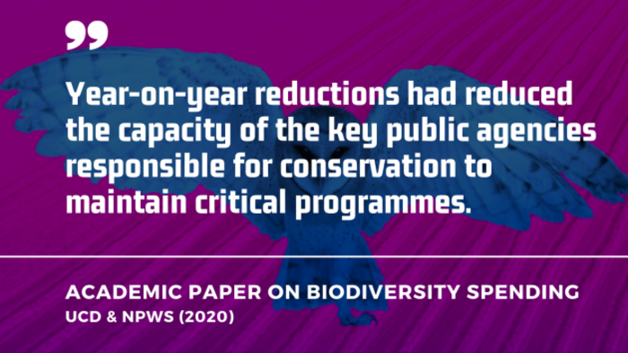 Year-on-year reductions had reduced the capacity of the key public agencies responsible for conservation to maintain critical programmes - UCD / NPWS