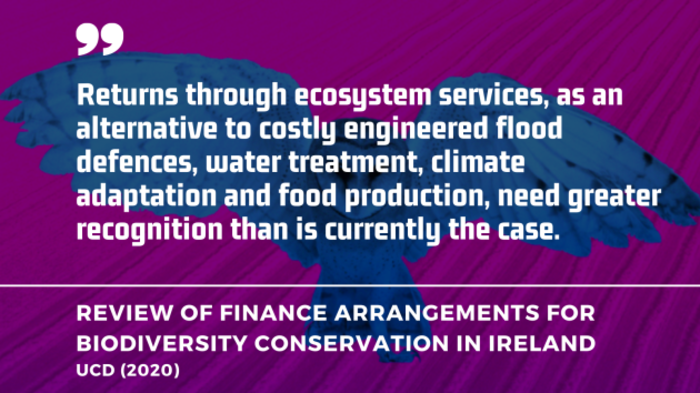 Returns through ecosystem services, as an alternative to costly engineered flood defences, water treatment, climate adaptation and food production, need greater recognition than is currently the case. - UCD