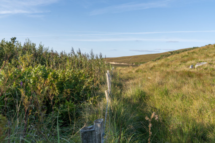 A fence separating two parcels of land with more high nature value farmland on the left side and grass on the right side