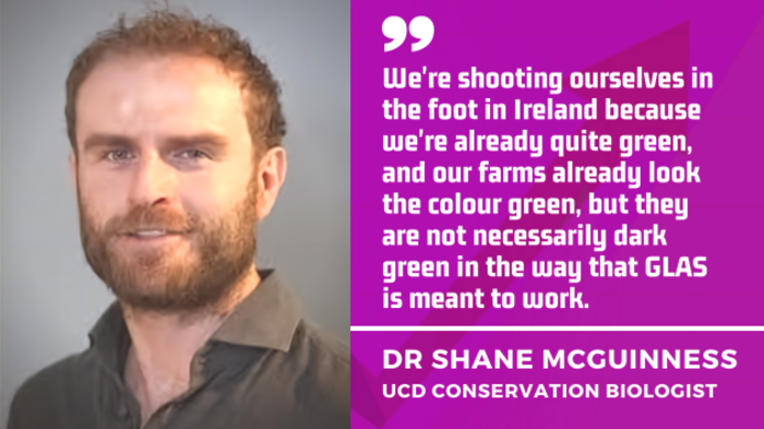 UCD Conservation Biologist Dr Shane McGuinness - We're shooting ourselves in the foot in Ireland because we're already quite green, and our farms already look the colour green, but they're not necessarily dark green in the way that GLAS is meant to work