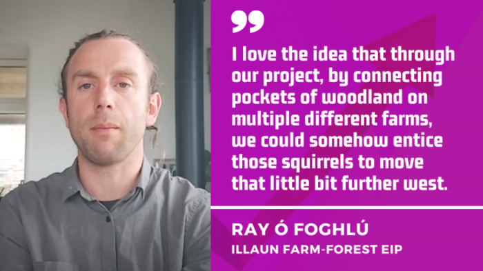 Ray Ó Foghlú,Illaun Farm-Forest project - I love the idea that our project could connect pockets of woodland on different farms and entice those squirrels to move further west